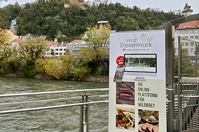 Rollup Wilde Steiermark Murinsel
